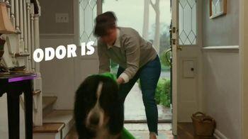 OxiClean Odor Blasters TV Spot, 'Remove Pet Odors' - Thumbnail 4