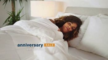 Ashley HomeStore Anniversary Mattress Sale TV Spot, 'Support Hope to Dream Foundation' - Thumbnail 2