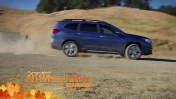 Subaru TV Spot, 'Fall in Love' Song by Flights and Arrows [T2] - Thumbnail 1