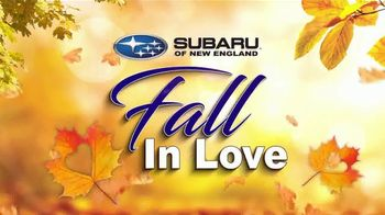 Subaru TV Spot, 'Fall in Love' Song by Flights and Arrows [T2] - Thumbnail 4