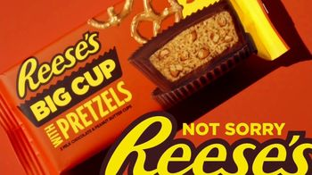 Reese's Big Cup With Pretzels TV Spot, 'Better Than Feathers' - Thumbnail 8