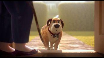 Hill's Pet Nutrition TV Spot, 'Poochini: A Love Story'