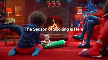 PetSmart TV Spot, 'Holidays: The Season of Spoiling: Free Same-Day Delivery'