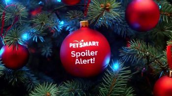 PetSmart TV Spot, 'Holidays: The Season of Spoiling: Free Same-Day Delivery' - Thumbnail 1