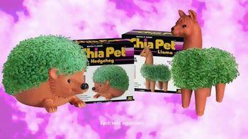 Chia Pet TV Spot, 'Richard Simmons and Bob Ross' - Thumbnail 7