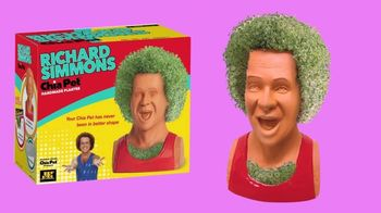 Chia Pet TV Spot, 'Richard Simmons, Bob Ross and Trolls' - Thumbnail 4