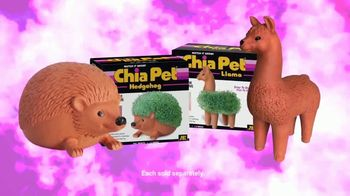 Chia Pet TV Spot, 'Richard Simmons, Bob Ross and Trolls' - Thumbnail 8