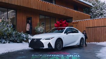 Lexus December to Remember Sales Event TV Spot, 'Driveway Moments: Peace and Joy Delivery' [T2] - 4739 commercial airings
