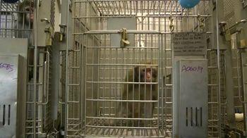 PETA TV Spot, 'Primate Research Center' - Thumbnail 1