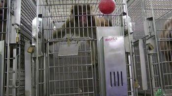 PETA TV Spot, 'Primate Research Center' - Thumbnail 8