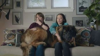 Rocket Mortgage TV Spot, 'Rufus' - Thumbnail 8