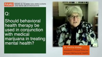 Behavioral Health Therapy thumbnail