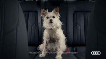 2020 Audi A6 TV Spot, 'Hair' [T1] - Thumbnail 2