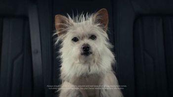 2020 Audi A6 TV Spot, 'Hair' [T1]