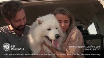 AKC Pet Insurance TV Spot, 'Keep Your Pet Healthy' - Thumbnail 8