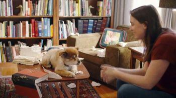 GEICO TV Spot, 'Puppy Bowl: Trouble' - Thumbnail 10