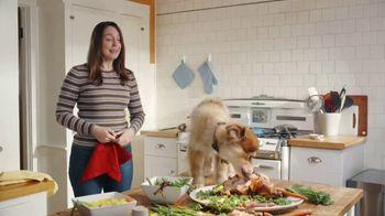 GEICO TV Spot, 'Puppy Bowl: Trouble' - Thumbnail 6