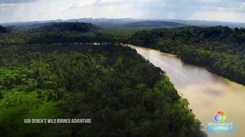 Discovery+ TV Spot, 'Judi Dench's Wild Borneo Adventure' - Thumbnail 2