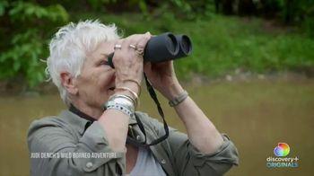 Discovery+ TV Spot, 'Judi Dench's Wild Borneo Adventure' - Thumbnail 5