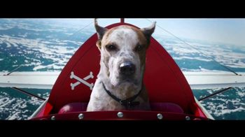Microsoft Corporation TV Spot, 'Holidays: Find Your Joy: A Dog's Dream' Song by Supergrass