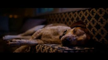 Microsoft Corporation TV Spot, 'Holidays: Find Your Joy: A Dog's Dream' Song by Supergrass - Thumbnail 5