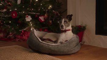 Meijer TV Spot, 'Holiday List: Dog Bone' - Thumbnail 3