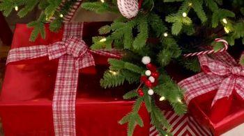 Michaels TV Spot, '50% Off Christmas Floral & Decor' - Thumbnail 6