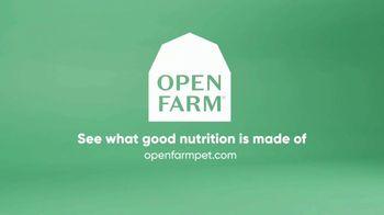 Open Farm TV Spot, 'Who's a Very Very Good Food?' - Thumbnail 9