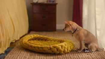 Etsy TV Spot, 'Meant For You: Wallpaper, Dog Bed, Earrings' - Thumbnail 7