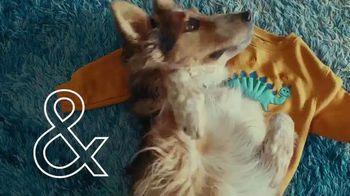 Arm & Hammer Laundry Plus OxiClean With Odor Blasters TV Spot, 'Beloved Sweatshirt' - Thumbnail 4
