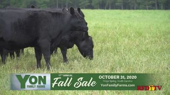 Yon Family Farms 17th Annual Fall Sale TV Spot, 'Look No Further' - Thumbnail 2