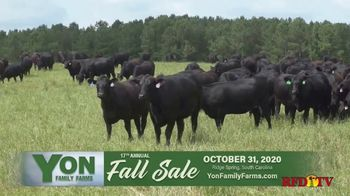 Yon Family Farms 17th Annual Fall Sale TV Spot, 'Look No Further' - Thumbnail 3