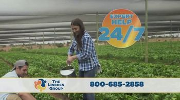 The Lincoln Group TV Spot, 'Boutique Farmers' - Thumbnail 4