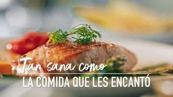 Royal Prestige TV Spot, 'Te tienen envidia sana' [Spanish] - Thumbnail 6