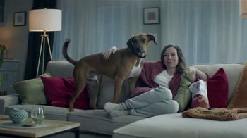 Dish Voice Remote TV Spot, 'Control'