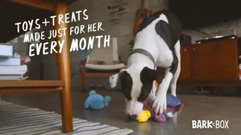 BarkBox TV Spot, 'How Do You Make Rosie Happy?' - Thumbnail 6