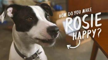 BarkBox TV Spot, 'How Do You Make Rosie Happy?'