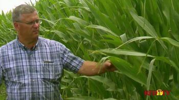 BASF Poncho Votivo 2.0 TV Spot, 'Seed Treatment'