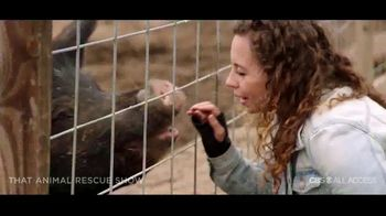 CBS All Access TV Spot, 'That Animal Rescue Show' Song by Of Monsters and Men