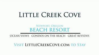 Little Creek Cove TV Spot, 'Winter on the Oregon Coast' - Thumbnail 8