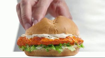 Arby's 2 for $6 Everyday Value TV Spot, 'Spicy Buffalo Crispy Chicken' Song by YOGI - 2075 commercial airings