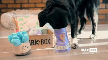 BarkBox TV Spot, 'Hannah'