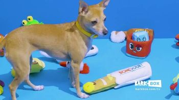BarkBox TV Spot, 'Treats and Toys Every Month'