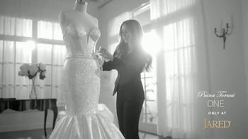 Jared TV Spot, 'Love Stories: Save 20%' Featuring Pnina Tornai - 615 commercial airings
