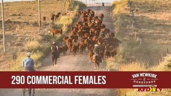 Van Newkirk Herefords TV Spot, '48th Annual Sale' - Thumbnail 3