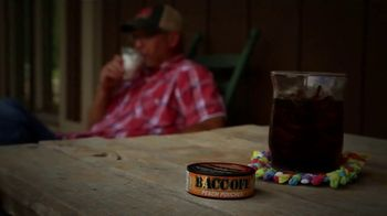 BaccOff Non-Tobacco Dip TV Spot, 'Stop Your Addiction and Keep Dipping'