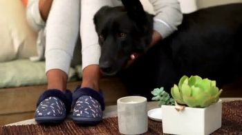 Bobs From SKECHERS TV Spot, 'PETCO Foundation: Thank You' - Thumbnail 7
