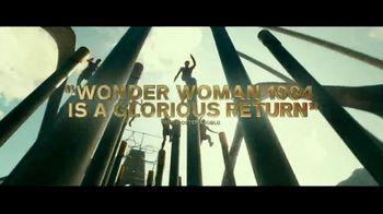 Wonder Woman 1984 - Alternate Trailer 80
