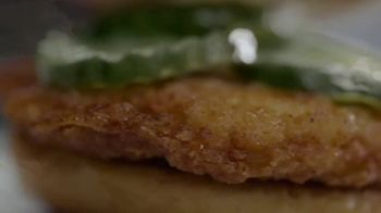 Sonic Drive-In Chicken Slinger TV Spot, 'Types of Spicy' - Thumbnail 6
