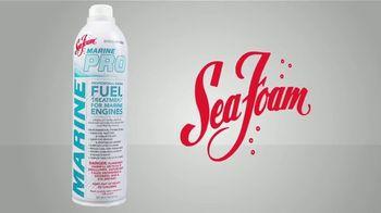 Sea Foam Marine Pro TV Spot, 'Help Your Marine Engine' - Thumbnail 5